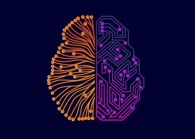 Un cervello costituito da neuroni e reti neurali artificiali, simbolo dell'interazione tra uomo e macchina grazie a tool di Intelligenze Artificiali.